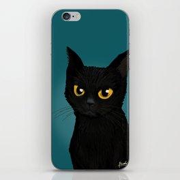 Cat in the blue iPhone Skin
