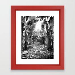 Banana Walk Framed Art Print