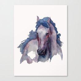 Horse #3 Canvas Print