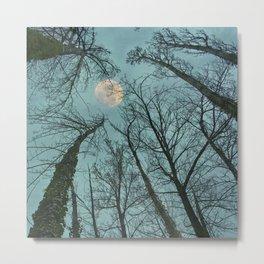 Magic moon over the trees Metal Print