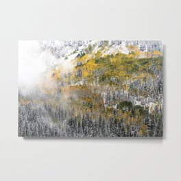 Powdered Sugar Metal Print