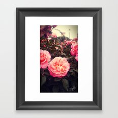 Castle's Flowers Framed Art Print