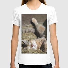 Lazy Sunday T-shirt