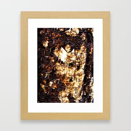 Rust1 Framed Art Print