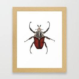 Goliath Beetle Framed Art Print