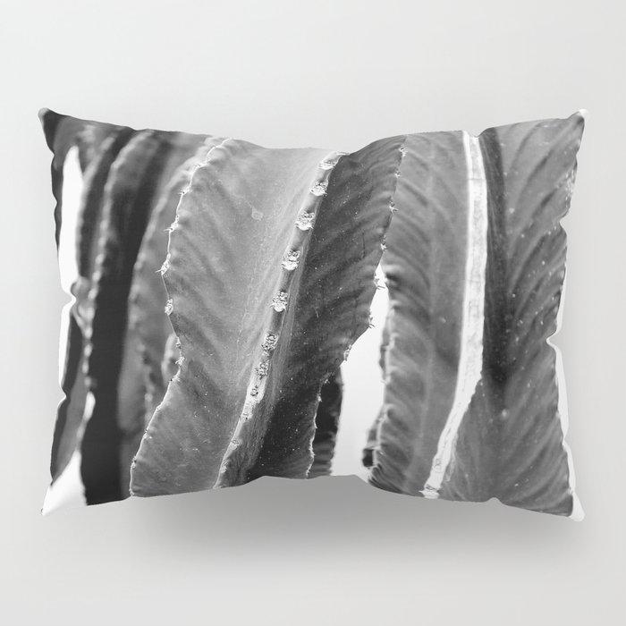 Boho Cactus Pillow Sham