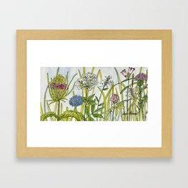 Herbs Wildflowers Garden Flowers Framed Art Print