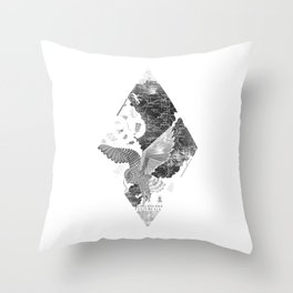 OWL MAP Throw Pillow