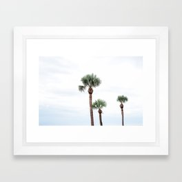 St. Simons Island Palm Trees Framed Art Print