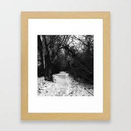 Winter in the forest Framed Art Print