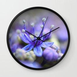 Macro image of purple hydrangea hortensia Wall Clock