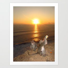 Monkey Drinking in the Sunset Art Print