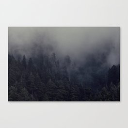 Penumbra Canvas Print