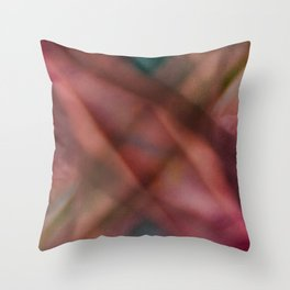 Burnished Throw Pillow