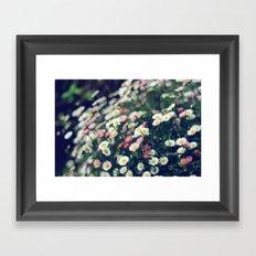 Little beauties Framed Art Print