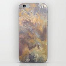 Desert Rain iPhone & iPod Skin