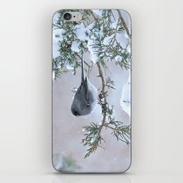 Snow Day Junco iPhone Skin