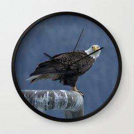 Bald Eagle of Resurrection Bay, No. 2 Wall Clock