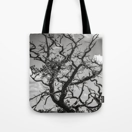 Ancient Tree, Survivor, Alive Tote Bag