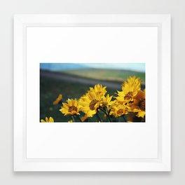 Yellow Flowers Blowing in Breeze Framed Art Print