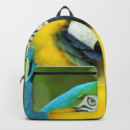 Blue-and-yellow Macaw Backpack