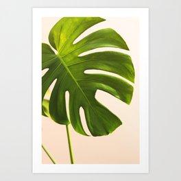 Verdure #9 Art Print