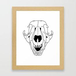 Baby Cougar Skull, baby teeth, transparent line art Framed Art Print