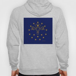 Indiana: The Crossroads of Abortion Access Hoody
