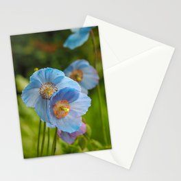 Blue Himalayan Poppies Stationery Cards