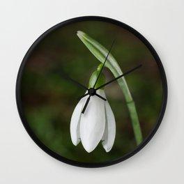 Single Snowdrop Wall Clock