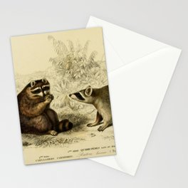 Naturalist Raccoons Stationery Cards