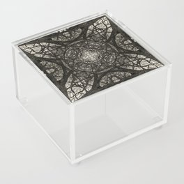Branching Symmetry Acrylic Box