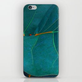 Two Sea Grape Leaves iPhone Skin
