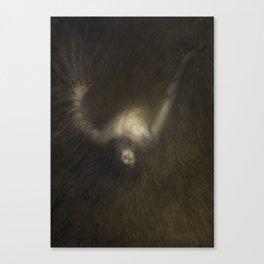 Raven Brother 7 Canvas Print