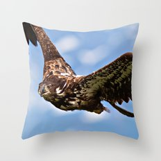 Flying Immature Bald Eagle Throw Pillow