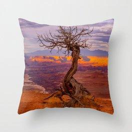 Canyonlands National Park Tree Panoramic Print Throw Pillow