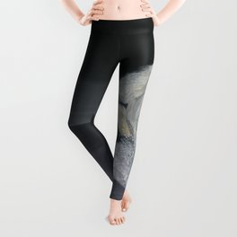 White Horse Freedom Leggings