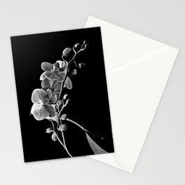 Dendrobium Stationery Cards