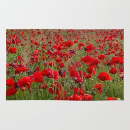 Field of poppies in the lake Rug