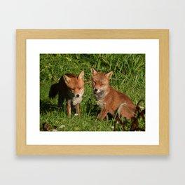 Mr & Mrs Fox 3 Framed Art Print