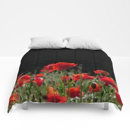Red Poppies in bright sunlight Comforters