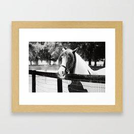 Extraordinary Black & White Framed Art Print