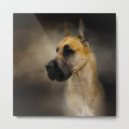 Dashing Great Dane Metal Print