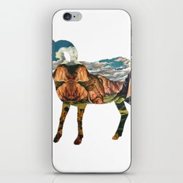 VALLEY ONE iPhone Skin