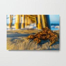 Seaweed at Sunrise Metal Print