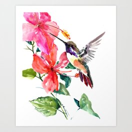 Hummingbird and Hibiscus, tropical Hibiscus design Art Print