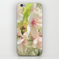 cherry blossom iPhone & iPod Skins featuring Cherry Blossom by Cassia Beck