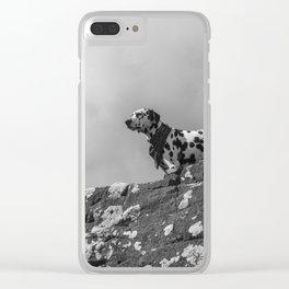 Dalmatian. Clear iPhone Case