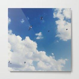 Birds in the sky Metal Print