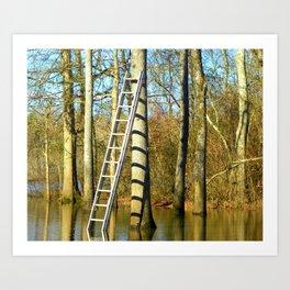 Ladder against a tree Art Print